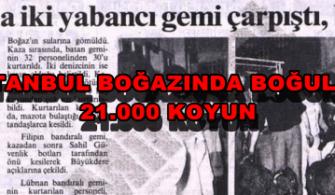 ilginc - 8 ist bogaz koyun 600x287 1 335x195 - İstanbul Boğazında Boğulan Koyunlar