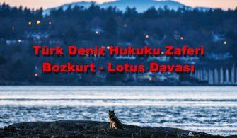 ilginc - Bozkurt Lotus Davası 335x195 - Türk Deniz Hukuku Zaferi Bozkurt - Lotus Davası