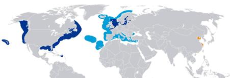 teknik-bilgiler - 1 2 - Global Sülfür Limitleri ve 2020 Yılından Beklentiler