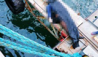 haberler - Yalovada tersane işçisi 335x195 - Tersane Emektarının Bedeni Denizde Bulundu