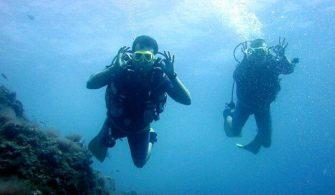 dalış sporu