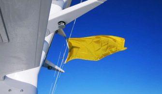 mevzuatlar - Karantina Bayrağı 335x195 - Karantina Uygulaması ve Quebec Flaması
